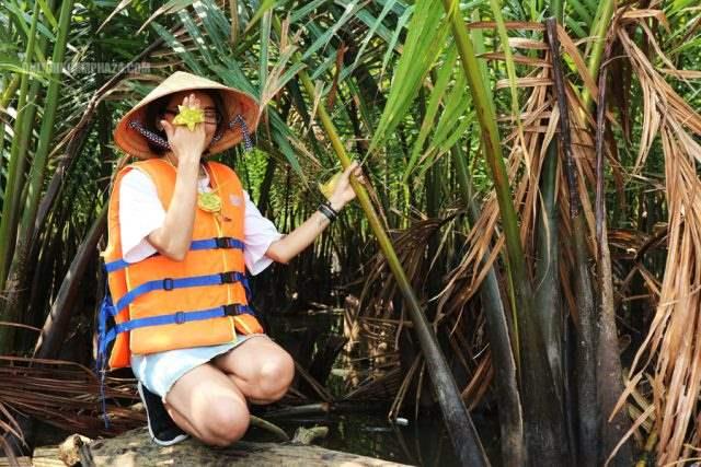 Rừng dừa bảy mẫu – Hội An