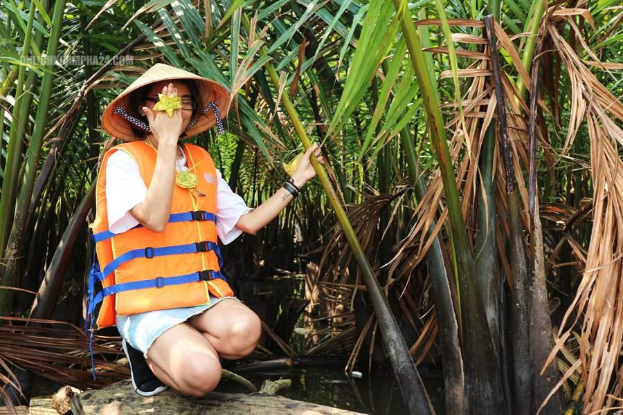 Hình ảnh: Rừng dừa bảy mẫu – Hội An
