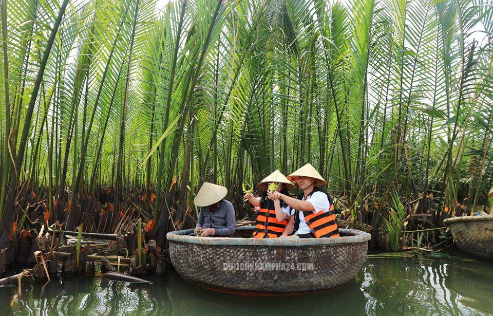 Rừng dửa bảy mẫu Cẩm Thanh, Hội An