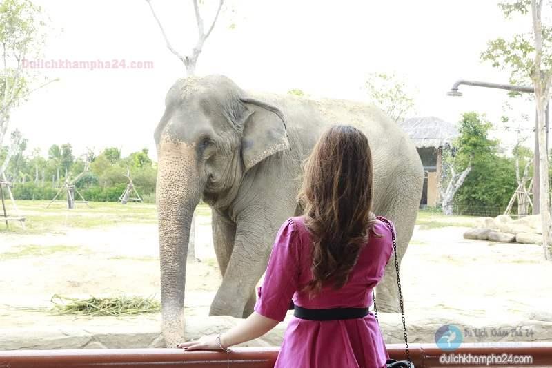 Khu sở thú tại Vinpearl Land Nam Hội An